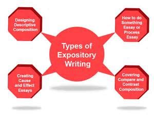 Example of Expository Essay Essay writer saves your